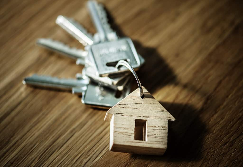 Idea regalo casa nuova i regali che daranno alla casa un for Idee regalo casa nuova