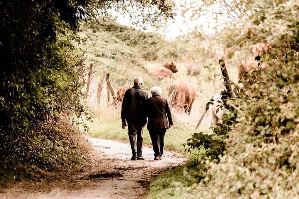 Anniversario Matrimonio 55 Anni Regalo.Idee Regalo Per 60 Anni Di Matrimonio 10 Regali Per Le Nozze Di