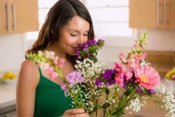 Fiori San Valentino: 7 fiori che le donne amano più delle rose